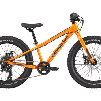 "bicicleta niños Canondale 20"""